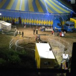 L'ippopotamo circo