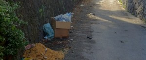 Aggiornamenti per la situazione di Via Patacca: Continua la discarica...