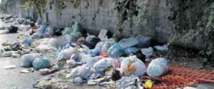 Sesto: Ho chiesto più polizia per salvaguardare il decoro igienico ambientale